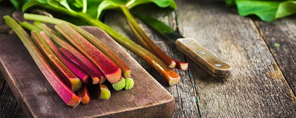 Eat the Season: Rhubarb
